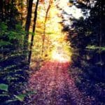 The 7 Life Changes You Need to Make on Your Path of Awakening